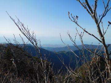 木々の隙間から見える瀬戸内海方面の景色