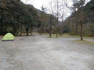 柳瀬キャンプ場テントサイト