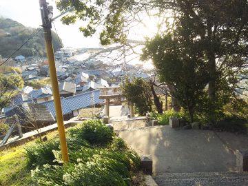 豊玉姫神社の石段