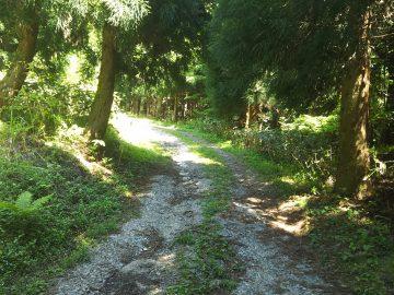 登山口に向けての未舗装部分の道