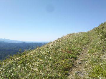 眺めのいい登山道