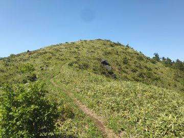 若杉山山頂はすぐそこです