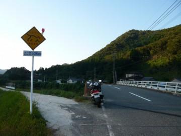 ツシマヤマネコ注意の道路標識