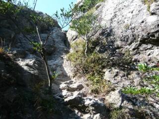 洲藻白嶽登山道