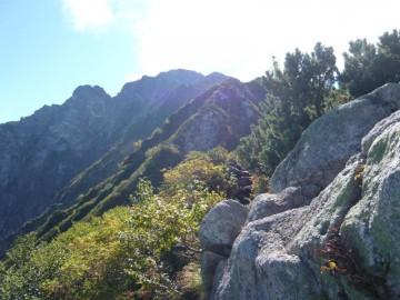 山頂方面を望みながら登ります