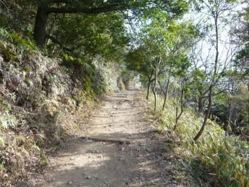 飯野山登山道。緩やかでよく整備されています。