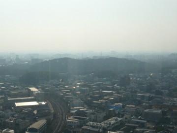 堺市役所展望台から見る仁徳天皇稜