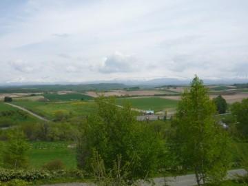 千代田の丘